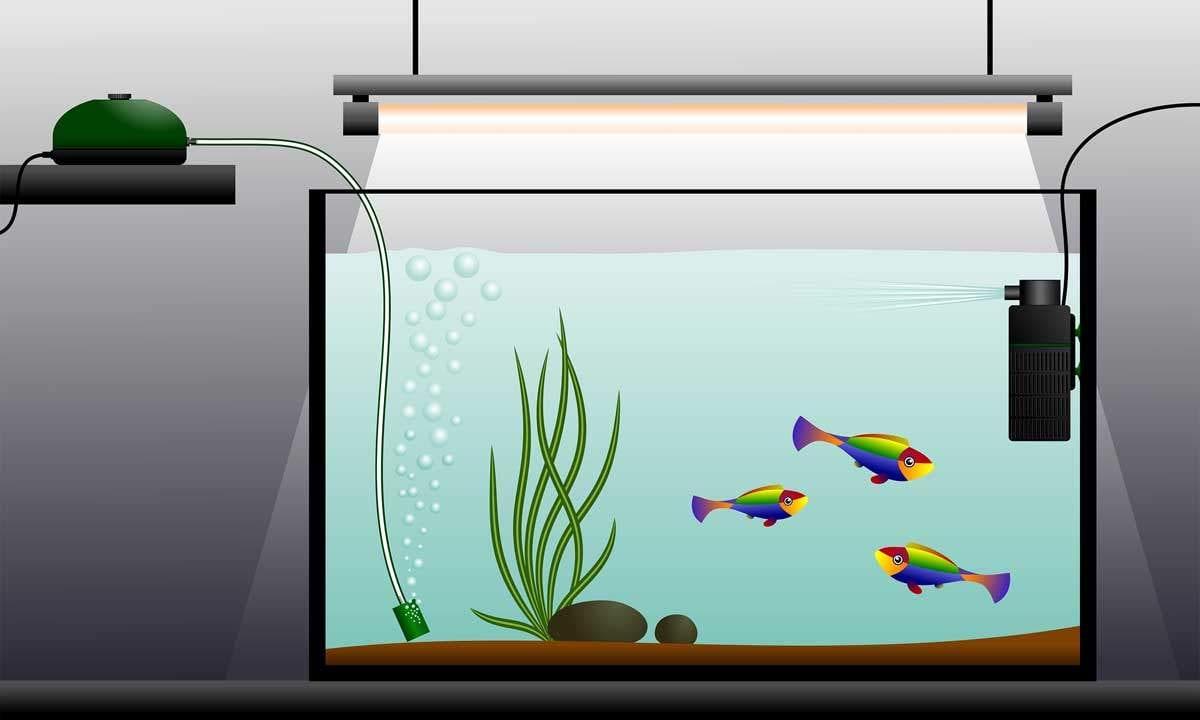 bigstock-Aquarium-Zadvinskiy